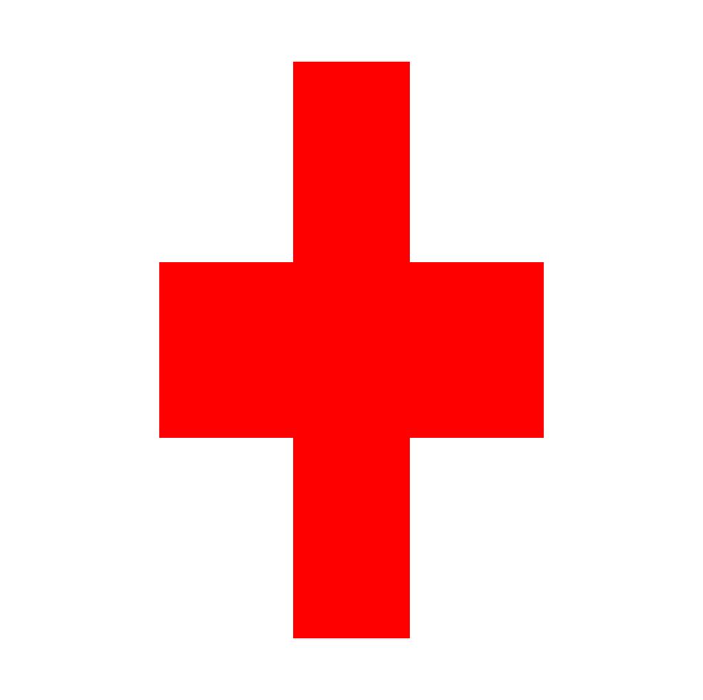 Computer Health Service